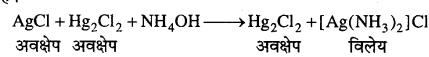 MP Board Class 12th Chemistry Solutions Chapter 9 उपसहसंयोजन यौगिक - 32