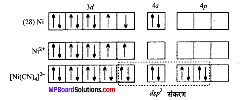 MP Board Class 12th Chemistry Solutions Chapter 9 उपसहसंयोजन यौगिक - 43