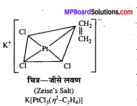 MP Board Class 12th Chemistry Solutions Chapter 9 उपसहसंयोजन यौगिक - 45