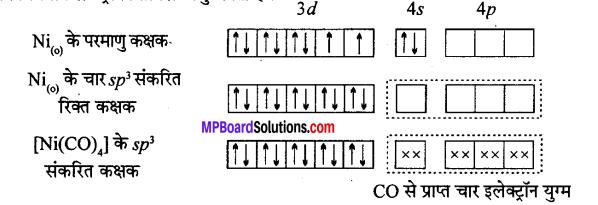 MP Board Class 12th Chemistry Solutions Chapter 9 उपसहसंयोजन यौगिक - 61