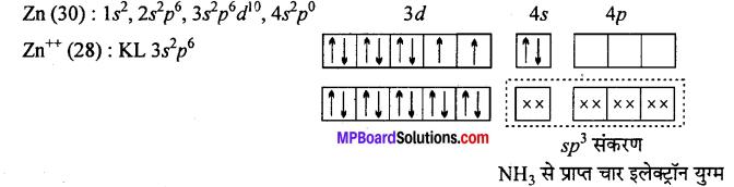MP Board Class 12th Chemistry Solutions Chapter 9 उपसहसंयोजन यौगिक - 62