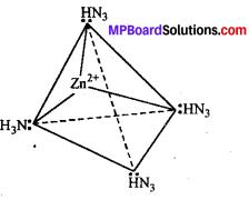MP Board Class 12th Chemistry Solutions Chapter 9 उपसहसंयोजन यौगिक - 63