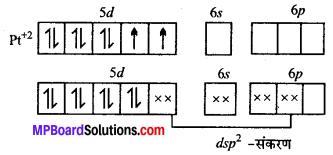 MP Board Class 12th Chemistry Solutions Chapter 9 उपसहसंयोजन यौगिक - 8
