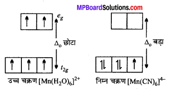 MP Board Class 12th Chemistry Solutions Chapter 9 उपसहसंयोजन यौगिक - 9