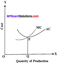MP Board Class 12th Economics Important Questions Unit 3 Producer Behaviour And Supply img-22