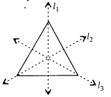 MP Board Class 6th Maths Solutions Chapter 13 Symmetry Ex 13.2 17