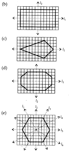 MP Board Class 6th Maths Solutions Chapter 13 Symmetry Ex 13.2 20