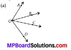 MP Board Class 6th Maths Solutions Chapter 4 Basic Geometrical Ideas Ex 4.3 2