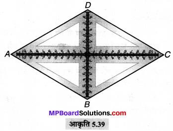 MP Board Class 6th Maths Solutions Chapter 5 प्रारंभिक आकारों को समझना Ex 5.6 image 10