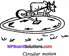 MP Board Class 6th Science Solutions Chapter 10 Motion and Measurement of Distances 4