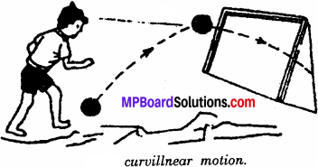 MP Board Class 6th Science Solutions Chapter 10 Motion and Measurement of Distances 5
