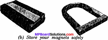 MP Board Class 6th Science Solutions Chapter 13 Fun with Magnets 2