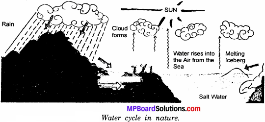 MP Board Class 6th Science Solutions Chapter 14 Water 3 - Copy