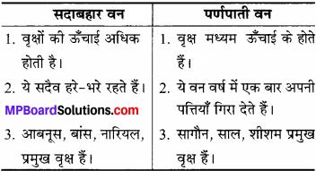 MP Board Class 6th Social Science Solutions Chapter 24 भारत की प्राकृतिक वनस्पति एवं जीव-जन्तु img 1