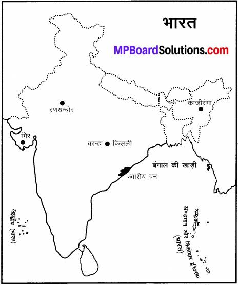 MP Board Class 6th Social Science Solutions Chapter 24 भारत की प्राकृतिक वनस्पति एवं जीव-जन्तु img 4