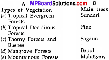 MP Board Class 6th Social Science Solutions Chapter 24 Natural Vegetations and Animals in India 1