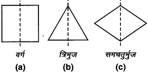 MP Board Class 7th Maths Solutions Chapter 14 सममिति Ex 14.1 image 5