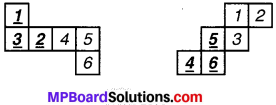MP Board Class 7th Maths Solutions Chapter 15 ठोस आकारों का चित्रण Ex 15.1 image 3
