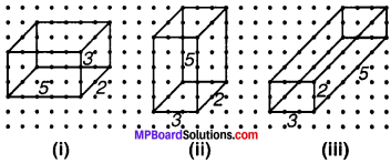 MP Board Class 7th Maths Solutions Chapter 15 ठोस आकारों का चित्रण Ex 15.2 image 2