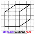 MP Board Class 7th Maths Solutions Chapter 15 ठोस आकारों का चित्रण Ex 15.2 image 7