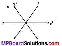 MP Board Class 7th Maths Solutions Chapter 5 रेखा एवं कोण Ex 5.1 13