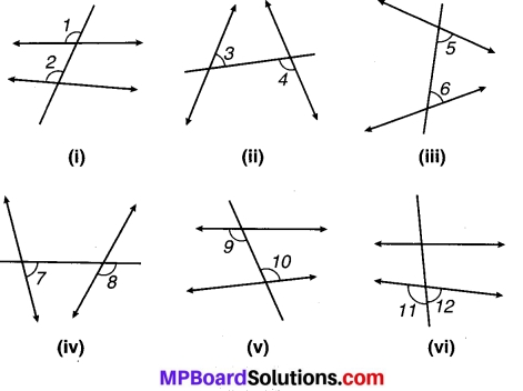 MP Board Class 7th Maths Solutions Chapter 5 रेखा एवं कोण Ex 5.1 14