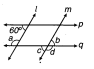 MP Board Class 7th Maths Solutions Chapter 5 रेखा एवं कोण Ex 5.1 20