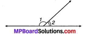 MP Board Class 7th Maths Solutions Chapter 5 रेखा एवं कोण Ex 5.1 3