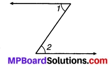 MP Board Class 7th Maths Solutions Chapter 5 रेखा एवं कोण Ex 5.1 6