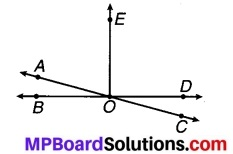 MP Board Class 7th Maths Solutions Chapter 5 रेखा एवं कोण Ex 5.1 8