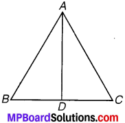 MP Board Class 7th Maths Solutions Chapter 7 त्रिभुजों की सर्वांगसमता Ex 7.1 image 2