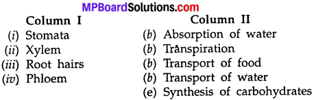 MP Board Class 7th Science Solutions Chapter 11 Transportation in Animals and Plants img 3