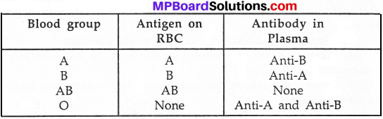MP Board Class 7th Science Solutions Chapter 11 Transportation in Animals and Plants img 5