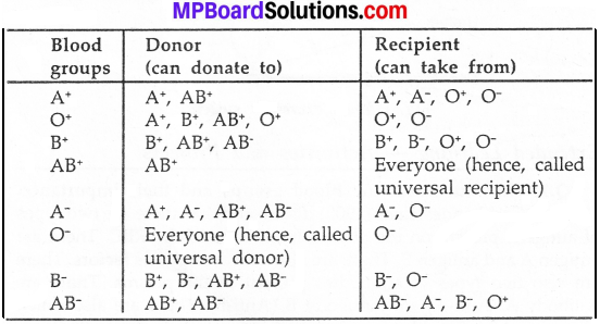 MP Board Class 7th Science Solutions Chapter 11 Transportation in Animals and Plants img 6