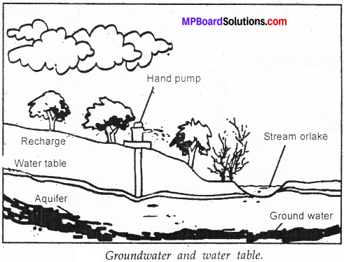 MP Board Class 7th Science Solutions Chapter 16 Water A Precious Resource image 2