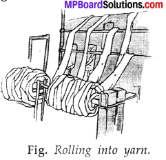 MP Board Class 7th Science Solutions Chapter 3 Fibre to Fabric img-10