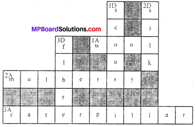 MP Board Class 7th Science Solutions Chapter 3 Fibre to Fabric img-5