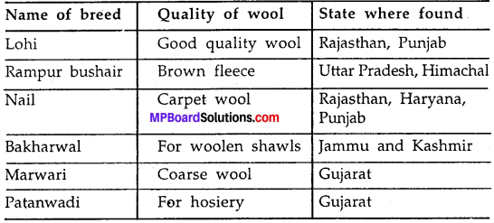 MP Board Class 7th Science Solutions Chapter 3 Fibre to Fabric img-7