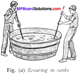 MP Board Class 7th Science Solutions Chapter 3 Fibre to Fabric img-8