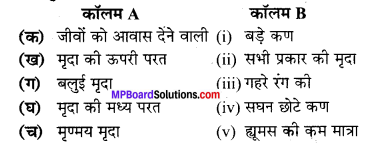 MP Board Class 7th Science Solutions Chapter 9 मृदा 2
