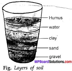 MP Board Class 7th Science Solutions Chapter 9 Soil img-2