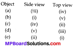 MP Board Class 8th Maths Solutions Chapter 10 Visualizing Solid Shapes Ex 10.1 2
