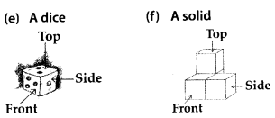 MP Board Class 8th Maths Solutions Chapter 10 Visualizing Solid Shapes Ex 10.1 9