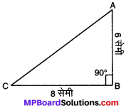 MP Board Class 8th Maths Solutions Chapter 6 वर्ग और वर्गमूल Ex 6.4 img-20