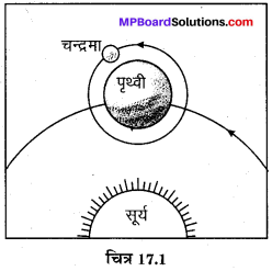 MP Board Class 8th Science Solutions Chapter 17 तारे एवं सौर परिवार 1