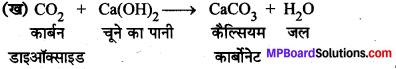 MP Board Class 8th Science Solutions Chapter 4 पदार्थ धातु और अधातु 10