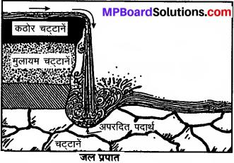 MP Board Class 8th Social Science Solutions विविध प्रश्नावली img 1