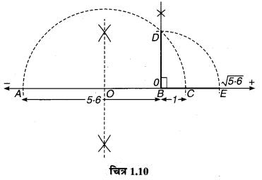 MP Board Class 9th Maths Guide Chapter 1 संख्या पद्धति Ex 1.6 12