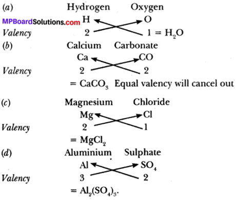 MP Board Class 9th Science Solutions Chapter 3 Atoms and Molecules 7