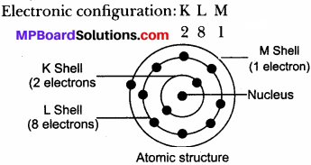 MP Board Class 9th Science Solutions Chapter 4 Structure of the Atom 24